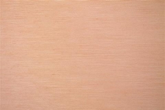 480x320_270_Tela-Traslucente-Exquisite-II-Clear-Tan
