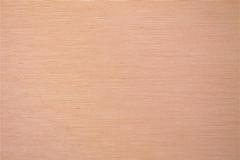 480x320_270_Tela-Traslucente-Exquisite-II-Clear-Tan-1