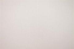 480x320_699_Tela-Traslucente-Roma-Cotton
